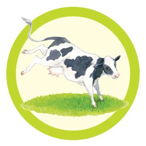 Cow Kickin Espress Biscotti