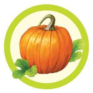 Pickin' Patch Pumpkin
